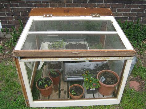 greenhouse window box antb pottery mini greenhouse or box