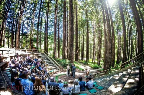 wedding venues in redwoods 2 a beautiful berkeley wedding in the redwood groves wedding venues weddings and wedding