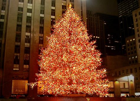 nyc rockefeller center christmas tree goes green nyc