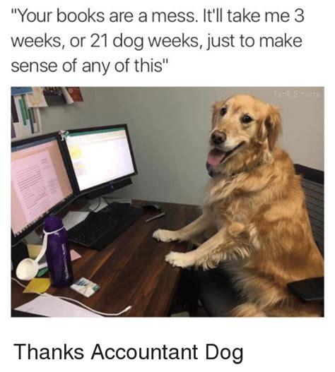 Accountant Dog Meme - 25 best memes about mess mess memes