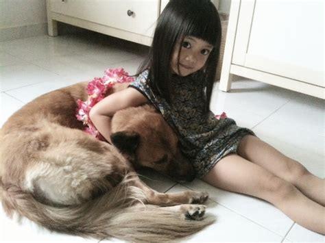 Baju Anjing Kucing Dengan Tas keeping a pet friendly home clean the