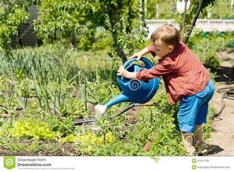 blue family in the garden boy watering rows of vegetables royalty free stock