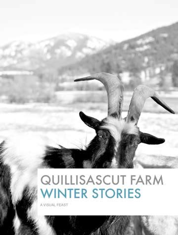 jonas on a farm in winter books free e book quillisascut