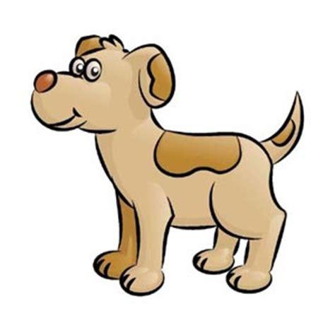 imagenes animales jpg consejos para poner nombre nombres de perros