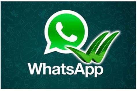 imagenes verdes whatsapp copiar y exportar mensajes en whatsapp