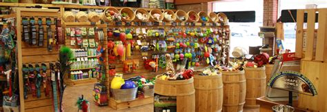 the puppy store pet store images usseek