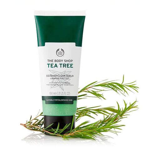 Kairos Scrub Green Tea 1000ml tea tree squeaky clean exfoliating scrub 100 ml