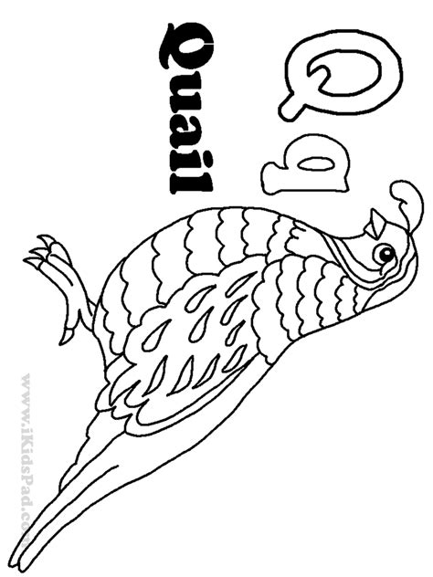quail coloring pages az coloring pages