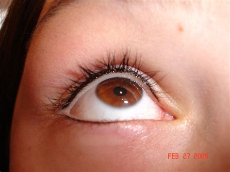 tattoo eyeliner in malaysia 70 best subtle beauty images on pinterest brows eye