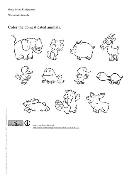 water animals worksheets kindergarten worksheet for kindergartners