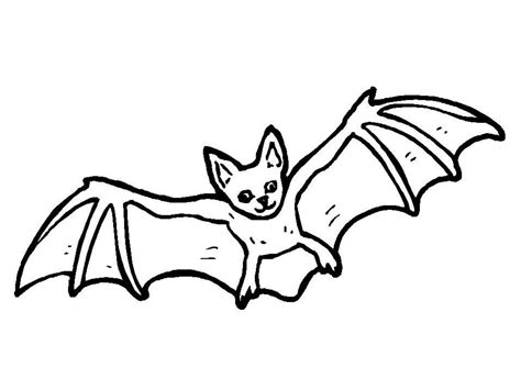 Bat Color Pages by Bat Color Pages Coloring Home