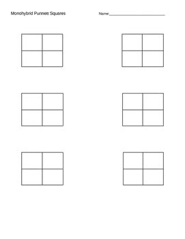 Punnett Square Template by Monohybrid And Dihybrid Punnett Square Template By