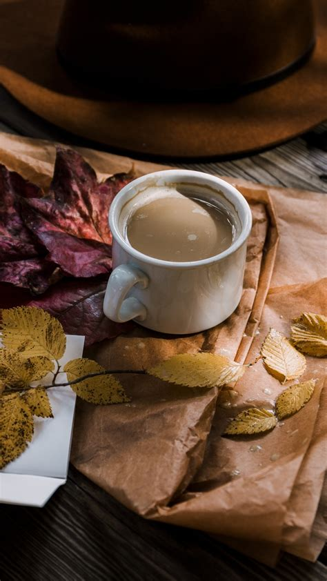 coffee autumn hat foliage wallpaper
