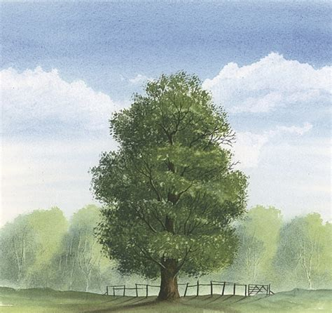Home Decor Trend How To Paint A Summer Tree Hobbycraft Blog