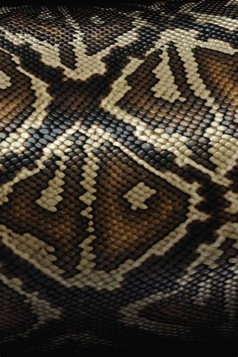 pin texture snake pictures reptiles skin pattern animals wallpaper on snake skin texture iphone wallpaper iphone wallpapers 2 lock screens background