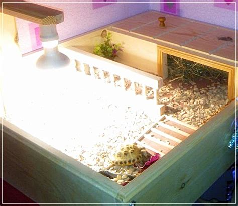 About Us Happy Tortoise Habitats Tortoise Table For Sale
