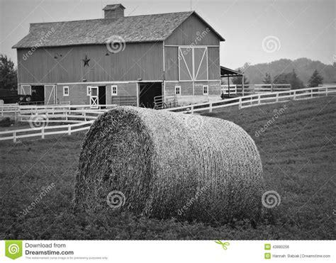 farm stock photo image 43880256