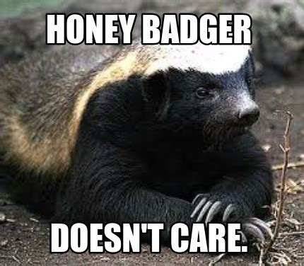 Badger Memes - meme creator honey badger doesn t care meme generator