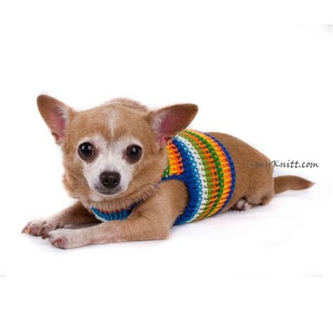 yorkie color variations 25 best ideas about chihuahua clothes on sweaters puppy sweaters and