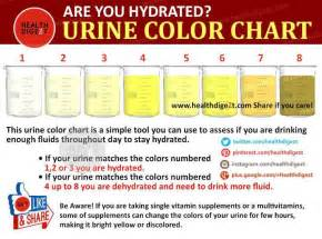 color urine are you hydrated urine color tells a great deal li trio