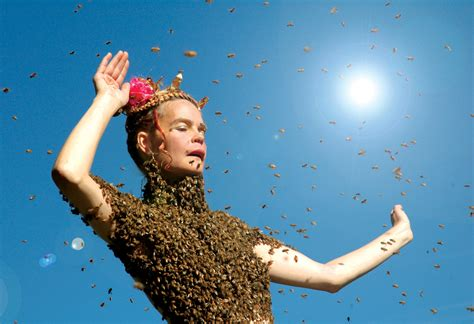 film queen of the sun queen of the sun the life and death of bees from the