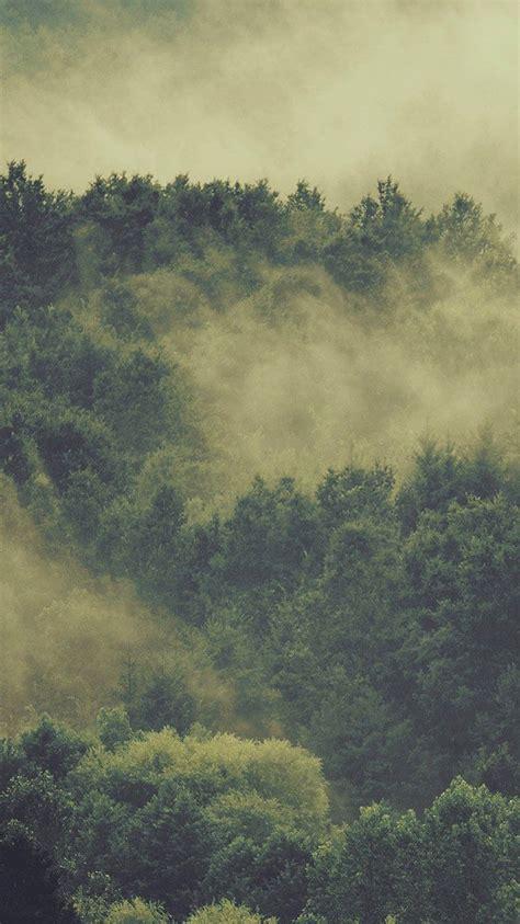 fonds decran nature verte pour iphone  ipad