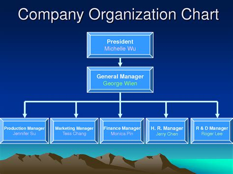 business organizational chart template 28 images