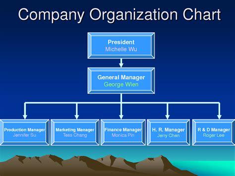 28 business organizational chart template exles