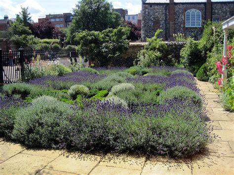 jardin de plantes aromatiques cr 233 er un jardin de simples aromatiques m 233 dicinales plantes utiles