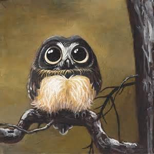 gallery for gt cute owl paintings