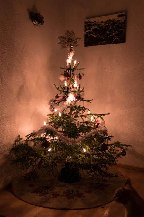 illuminazione natalizie di natale turate l emporio di natale 600 led