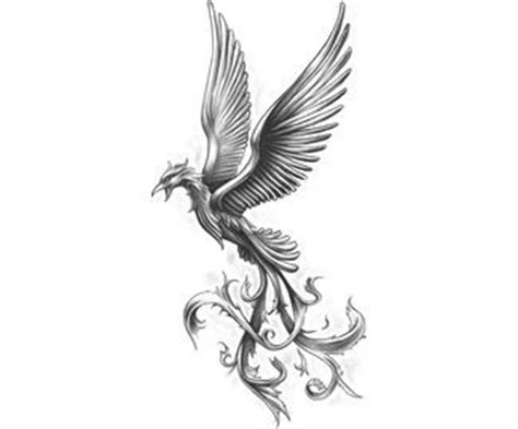 tattoo stencil paper wiki 1000 images about phoenix designs on pinterest phoenix