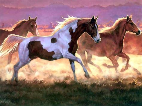 Equine Home Decor take off by persis clayton weirs my favorite animals