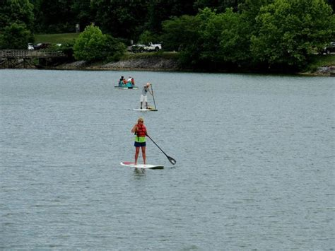 paddle boats bay area paddle boats marina area near duck island in warrior s