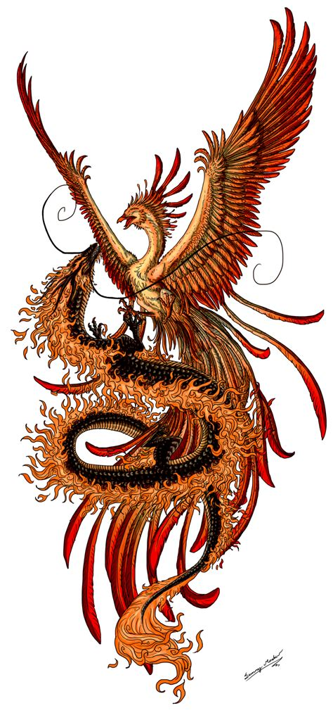 dragon and phoenix tattoo ink on tattoos design
