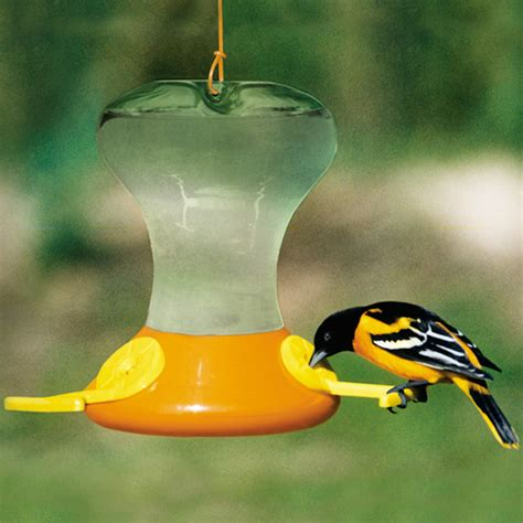 how to make oriole nectar duncraft s wild bird blog