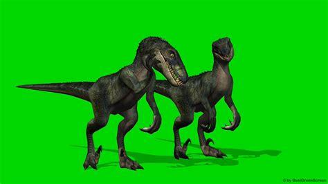 best for green screen velocirapor dinosaurs green screen