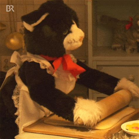 baking gif cat baking gif by bayerischer rundfunk find share on giphy