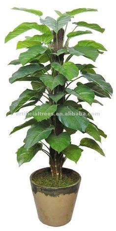 where can i purchase artificial trees on cape cod artificial tree artiifcial plant artificial tree artificial plant artificial plants