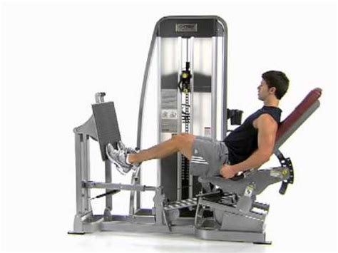 seated calf press calf raise exercise standing and seated machine weight