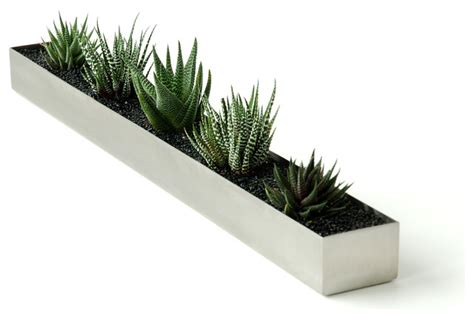modern plants indoor wood planter bench indoors 3 home lilys design ideas