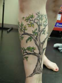 15 tree tattoo images pictures and designs
