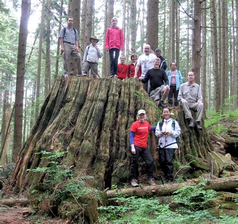 take a hike in coquitlam on saturday with experienced leaders
