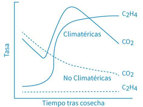 Modified Atmosphere Packaging Que Es by Etileno Ozeano Filtros Y Sachets De Etileno