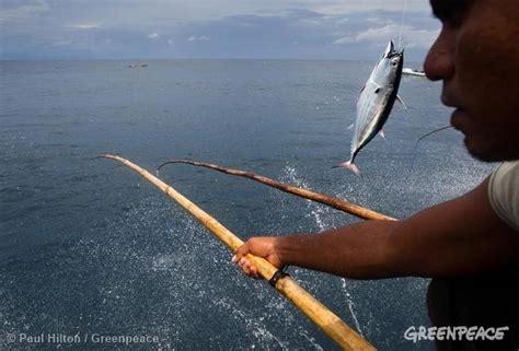 Pancing Tuna perikanan tuna bertanggung jawab dan berkelanjutan diterapkan di indonesia bagaimana itu