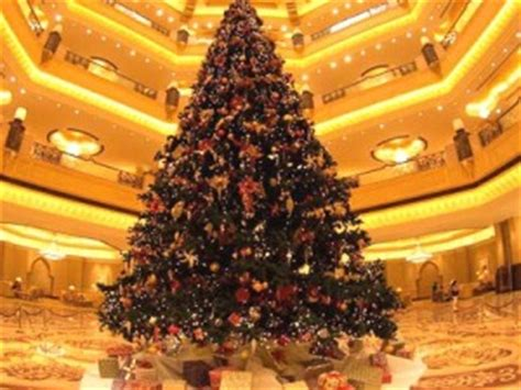 most expensive type of tree for christmas tree what is the world s most expensive tree usa rabbit breeders