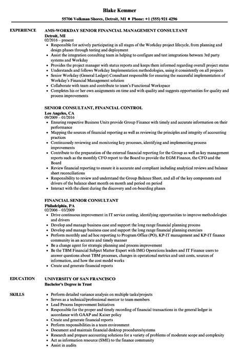 financial senior consultant resume sles velvet jobs