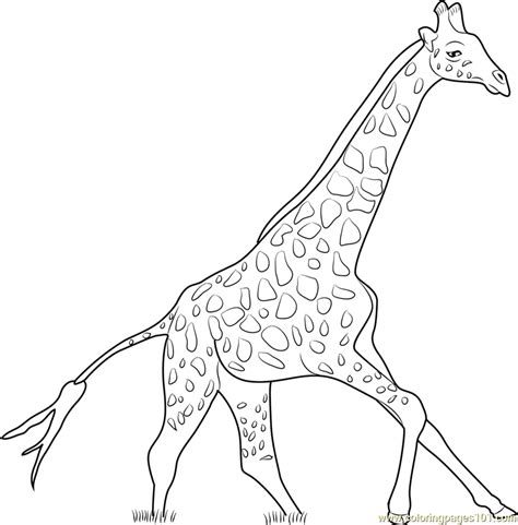 christmas giraffe coloring pages christmas giraffe coloring pages