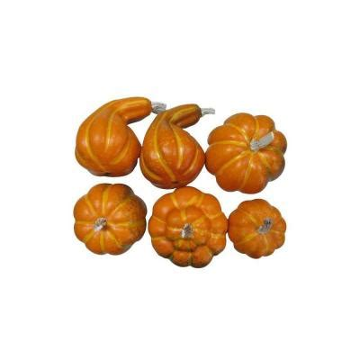 home accents bag of pumpkins set of 6