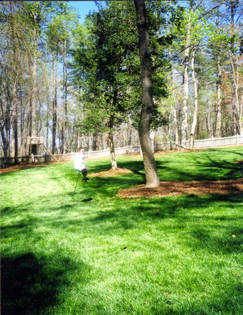 landscaping raleigh nc raleigh nc landscaping pictures before and after photos
